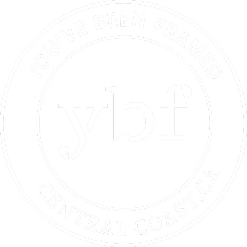 You've Been Framed Logo